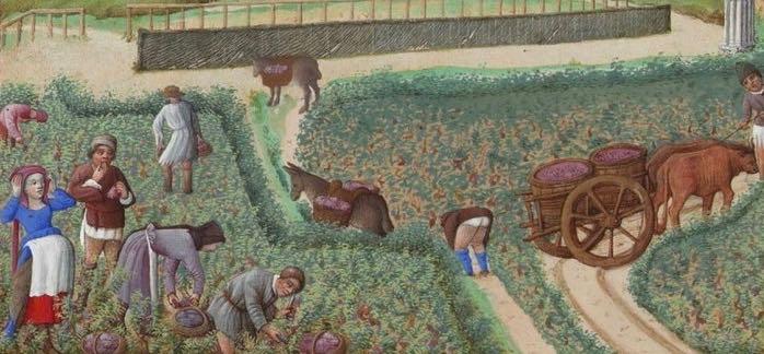 Les_Très_Riches_Heures_du_duc_de_Berry_septembre-e1441698086100 (1).jpg