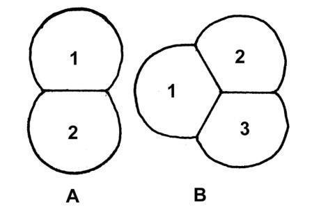 schéma17.jpg