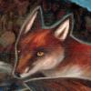 foxsauvage